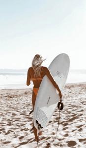 Surfboards-thewaveshack.com